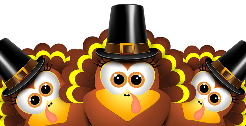 Cartoon turkeys in a pilgrim outfit. Vector illustration.